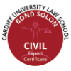 Certificate as Expert witness (Cardiff University Bond Solon)